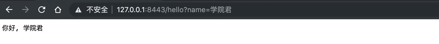 通过浏览器访问 HTTPS 服务