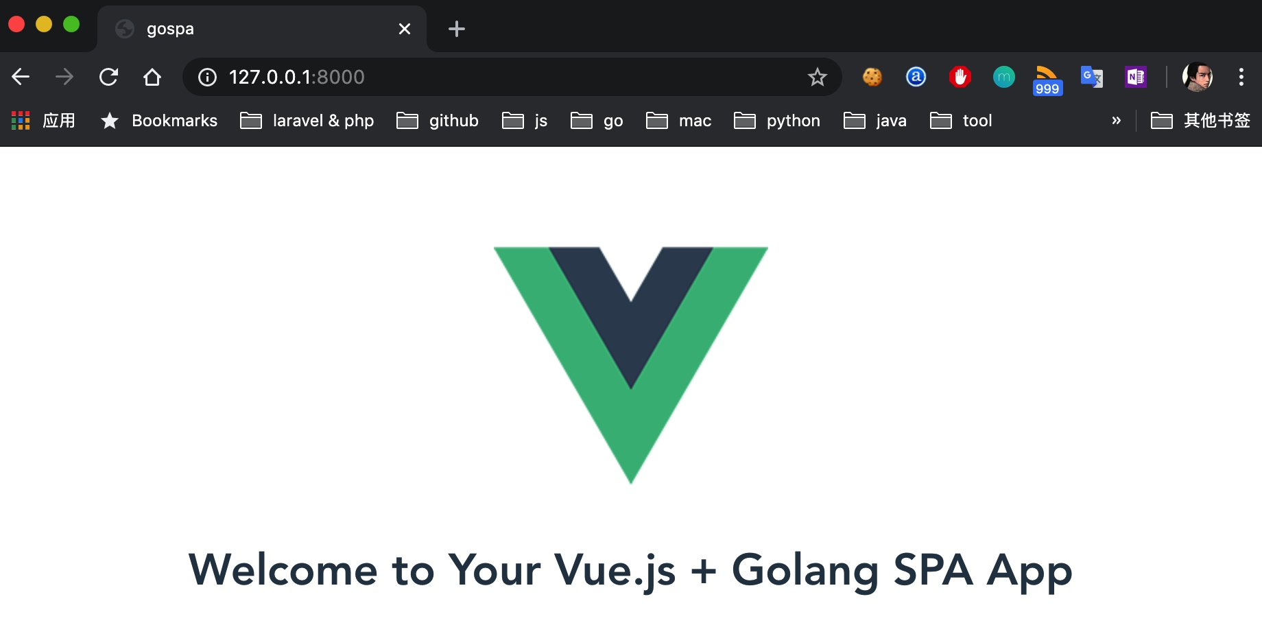 Vue + Go SPA 应用首页