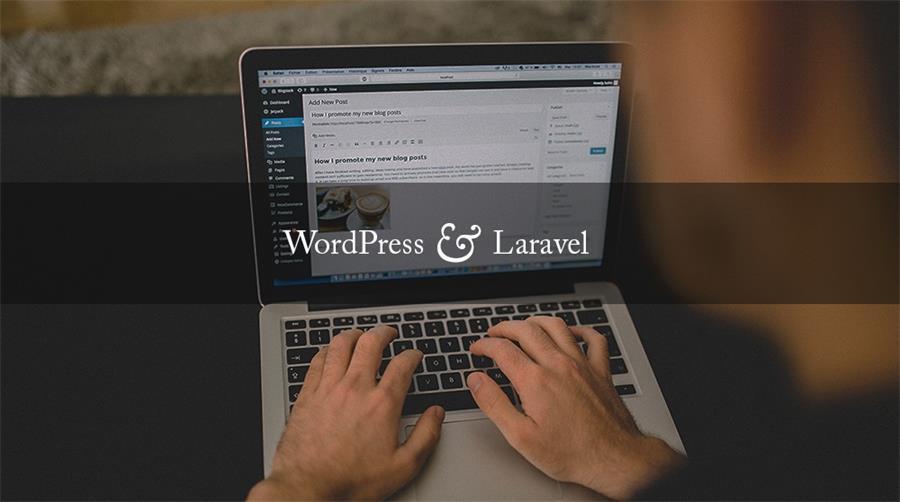 wordpress-and-laravel-overlay