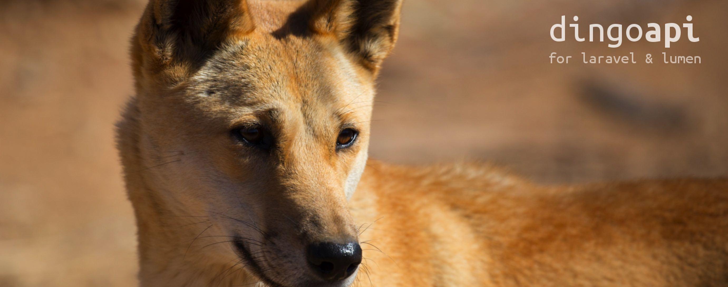 Laravel Dingo  API